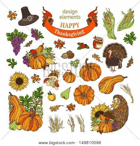 Vector Set Of Thanksgiving Design Elements Isolated On White Background.
