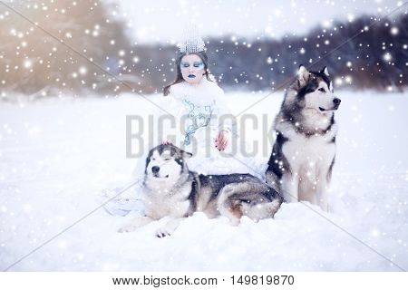 Beautiful Snow Queen With Dogs