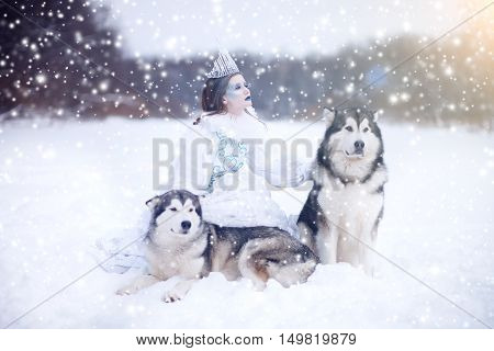 Snow-queen. Fairy Tale Girl With Huskies Or Malamute.