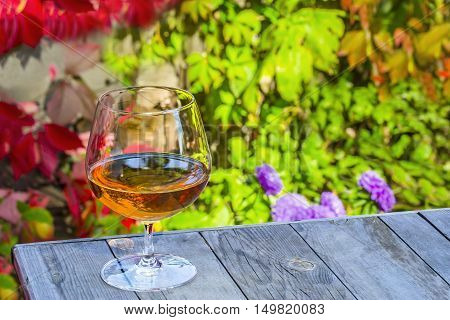 Snifter with brandy on a old table in the autumn garden