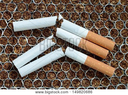 Close up broken cigarettes against the tobacco.