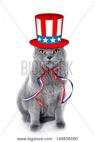 Cute cat with Uncle Sam hat and bow on white background. USA holiday concept.