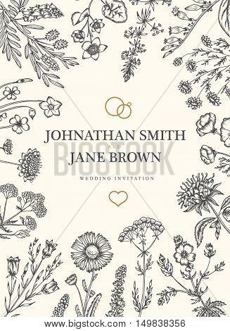 Wedding invitation in boho style. Wild flowers and herbs frame border. Daisy, harebell, scabious, bergamot, sorrel, california poppy, valerian. Vector vintage illustration