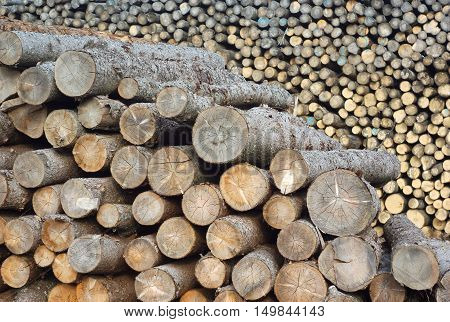 sawmill yard wood stack lumber logs construction industry