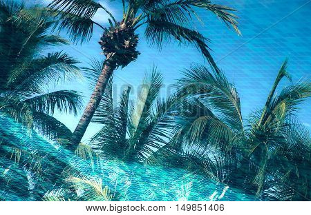 HDR tone effect of beautiful scenery from reflection of the coconut trees beside a pool of water. With tile of the pool under water