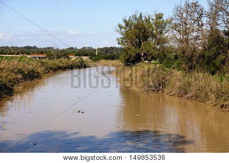 Wide flood of Nahal Alexander stream after winter rains Israel
