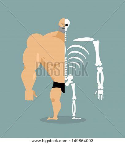 human structure. Skeleton men. construction of athlete. Bones and skull. Anatomy bodybuilder.