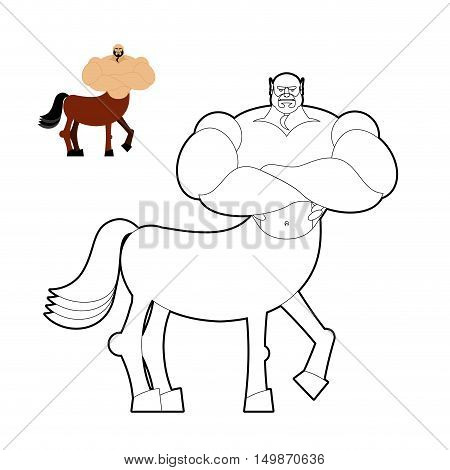 Centaur Coloring Book. Line Style Of Mythical Creature. Half Horse Half Person. Fairy-tale Character