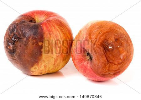 two rotten apple isolated on a white background. poster