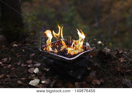 Charcoal grill with flames in autumn forest