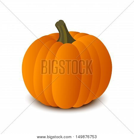 Pumpkin isolated on white background. The Symbol Of Halloween