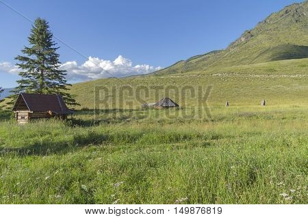 Abandoned cattle-ranch. Altai Mountains Russia. Sunny summer day.