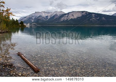 View of Abraham Lake from the shore.