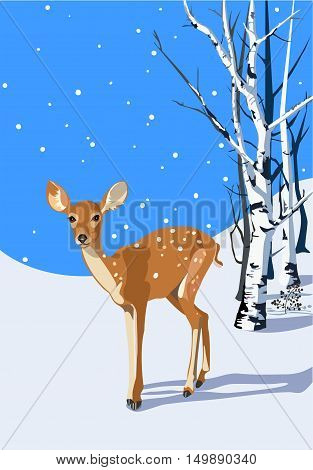 Young spotted fawn in a winter snowy scene
