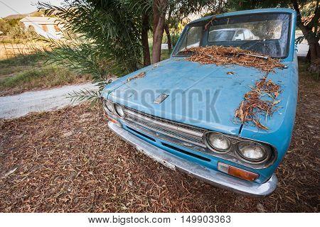 Old Blue Datsun 1300 Pickup Car