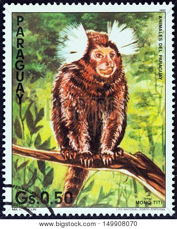 PARAGUAY - CIRCA 1985: A stamp printed in Paraguay from the