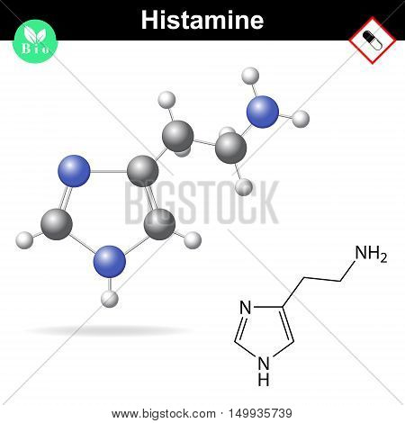 Histamine structural chemical formula 2d and 3d vector illustration isolated on white background eps 10