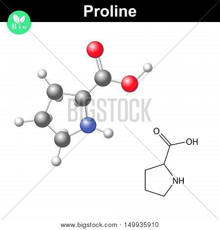 Proline non essential heterocyclic amino acid 2d and 3d vector illustration isolated on white background eps 8