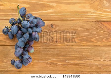 Blue Grapes On Table