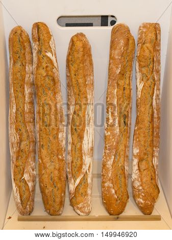 French Baguettes In Wood Basket In Bakery