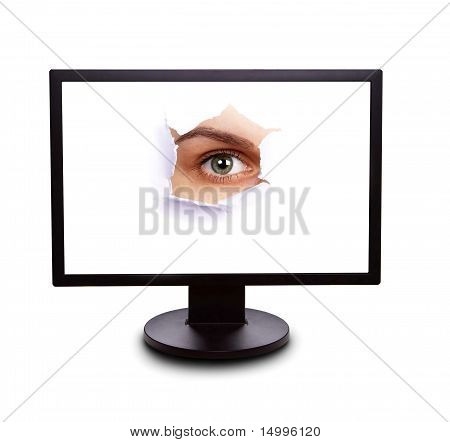 Sight From The Monitor