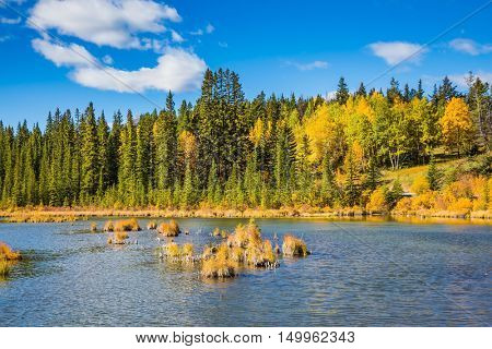 Canadian province of Alberta, the Rocky Mountains, Banff. Magnificent sunny day in lakes Vermilion. Concept of ecotourism