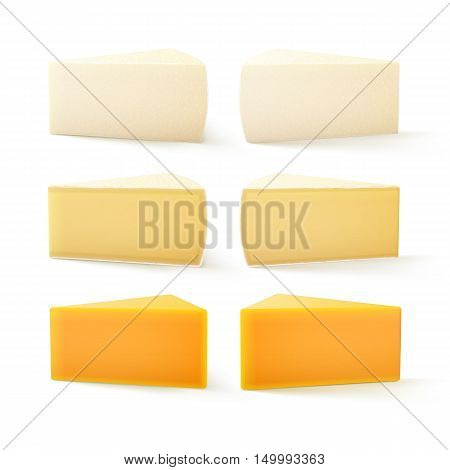 Vector Set of Triangular Pieces of Various Kind of Swiss Cheese Cheddar Bri Camembert Close up Isolated on White Background