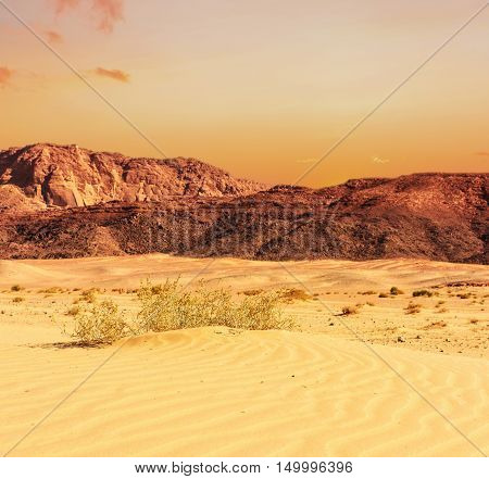 Egypt Sinai desert view Rocky hills on sunset