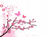 vector illustration of a branch with cherry blossom poster