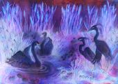 decorative illustration in violet and lila tones of birds swimming on pond with reeds. poster
