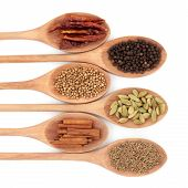 Spice selection of chili, coriander, black peppercorns, cinnamon sticks, cardamom and cumin seeds in wooden spoons over white background. poster