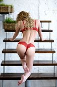 Beautiful sexy lady in elegant red panties and bra. Fashion portrait of model indoors. Beauty blonde woman with attractive body in lace lingerie. Female ass in underwear. Naked girl poster