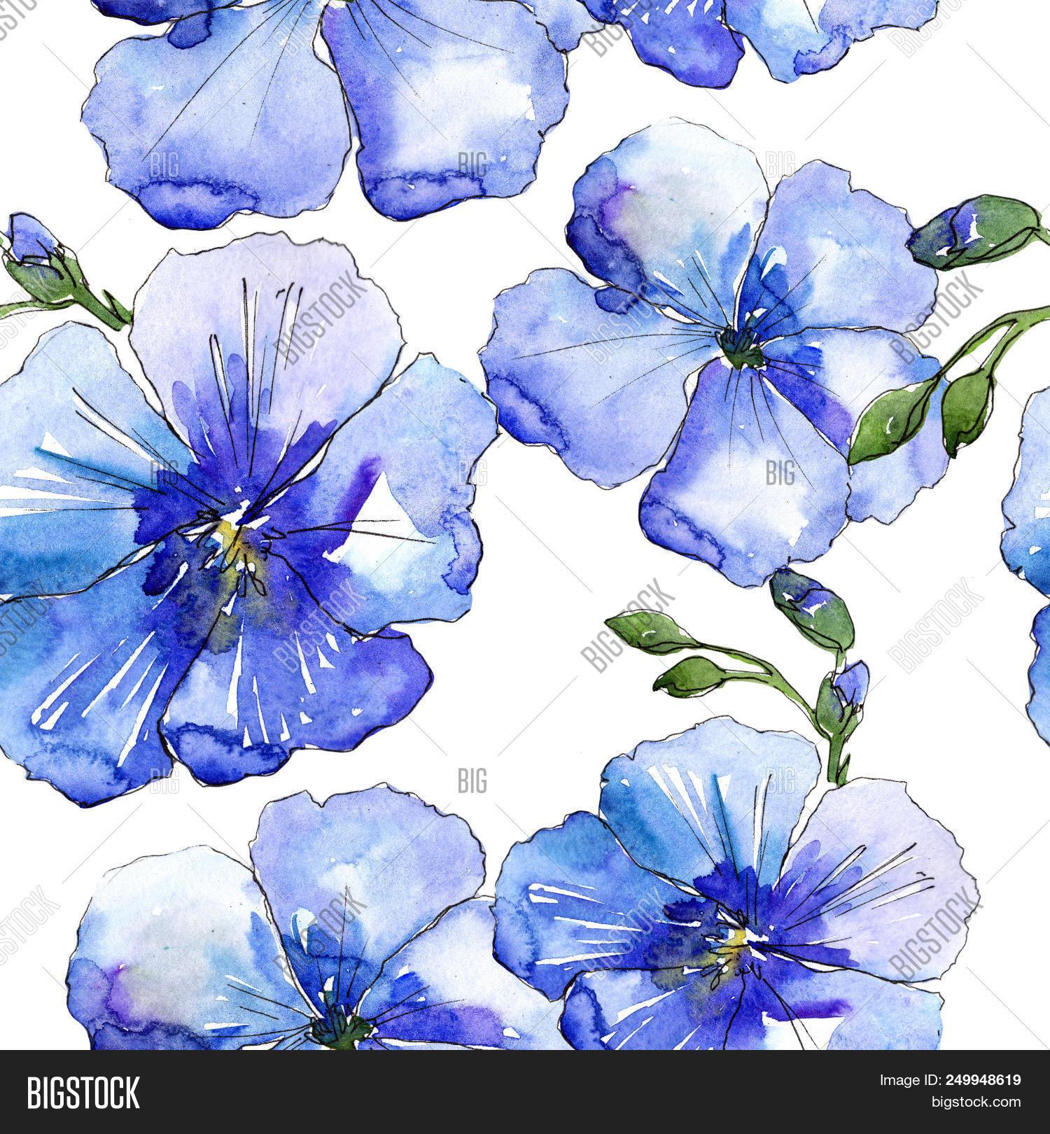 Blue Flax Flower Image Photo Free Trial Bigstock