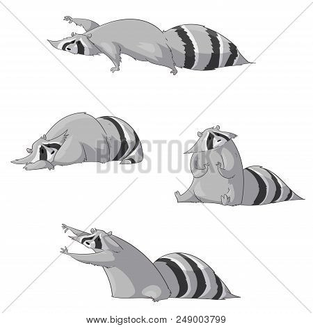 Set Of Colorful Vector Illustrations Of Cartoon Raccoons