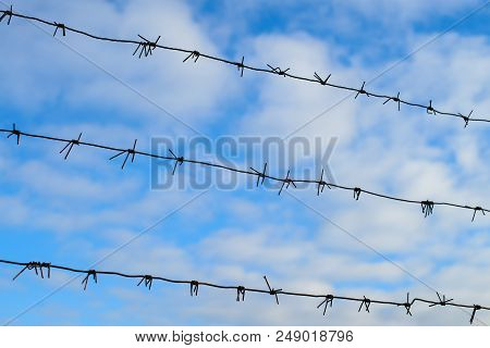 Barbed wire under tension under blue sky. Fence with barbed wire, prison or concentration camp poster