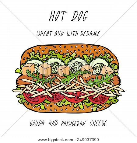 Hot Dog On A Wheat Bun With Sesame Seeds, With Gouda And Chedder Cheese, Tomato, Lettuce Salad. Fast
