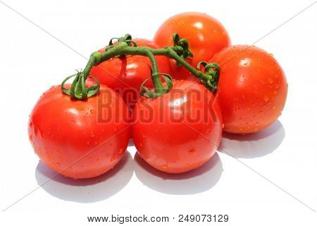 Tomato. Fresh Vine Ripened Tomato's isolated on a White with Text. room for text. Fresh Beef Stake Tomato. Cherry Tomato. Farm Fresh Tomato.  Text is removable