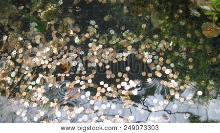 Coins Of Pennies, Nickels, Dimes And Quarters, In A Wishing Well.