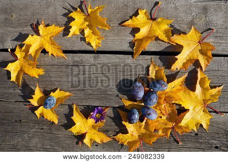 Yellow Autumn Leaves Of Maple And Blue  Maple In Circle Pattern On Woooden  Rustic Background