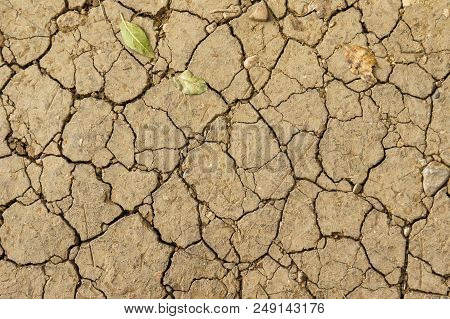 Soil background, abstract natural background of cracked ground, dry chapped earth, without water, cracks in the dried ground poster