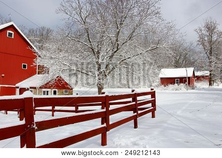Rural Landscape With Red Barns, Wooden Red Fence, Trees And Road Covered By Fresh Snow. Scenic Winte