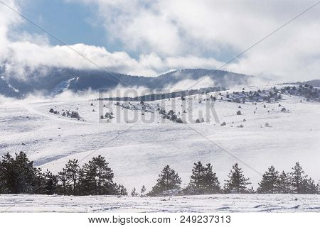 winter mountain landscape with snowy fields and conifer trees