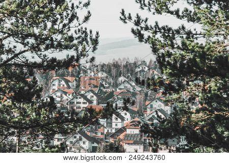 Landscape Of Rural Village Houses Through Conifer Trees