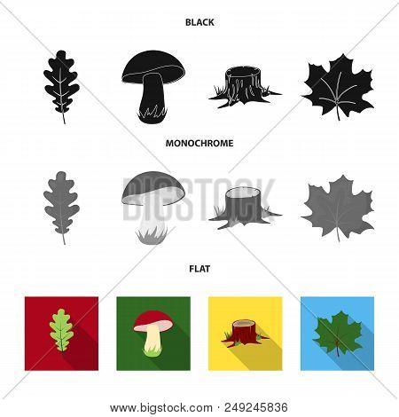 Oak Leaf, Mushroom, Stump, Maple Leaf.forest Set Collection Icons In Black, Flat, Monochrome Style V