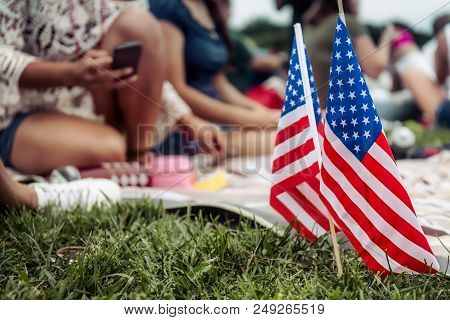 People Sitting On The Grass With American Flags Stuck In The Ground.