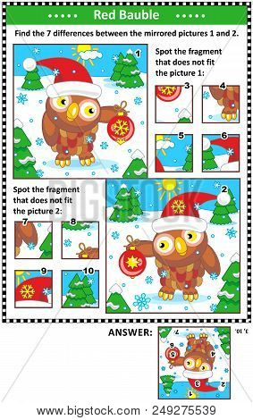 New Year Or Christmas Visual Puzzles With Owl And Red Bauble. Find The Differences Between The Mirro