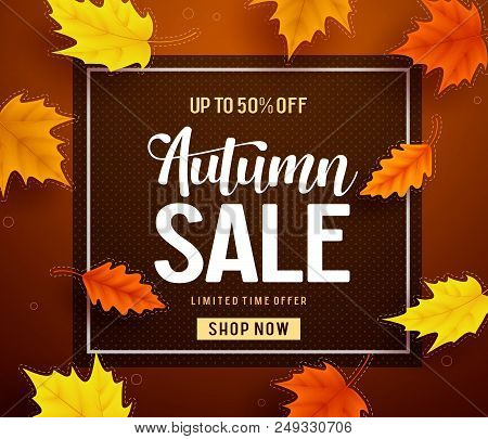 Autumn Sale Vector Banner Template With Frame And Sale Text In Fall Season Leaves Background For Sea