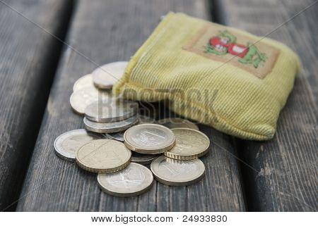 euro outside the coin wallet