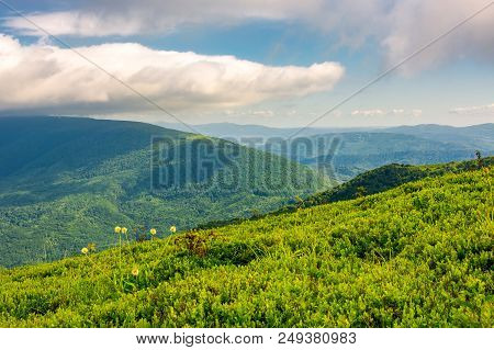 Beautiful Summer Landscape. Green Grassy Meadow On A Hillside On Top Of Mountain Ridge Under Cloudy