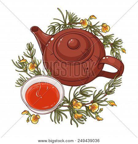 Rooibos Tea In Teapot Illustration On Whte Background